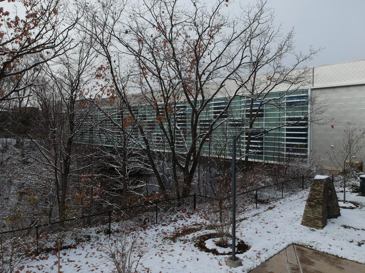 Academic II in Winter